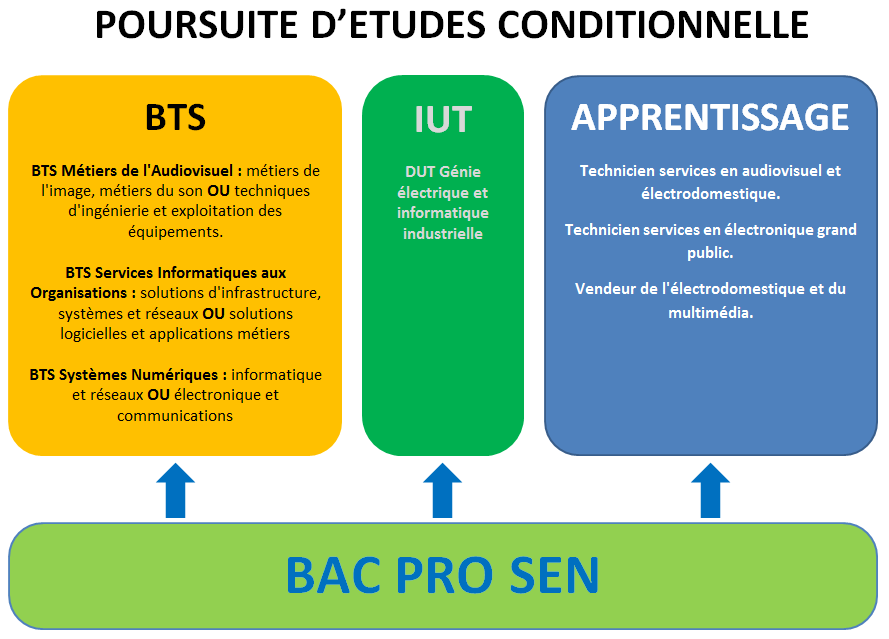 ossier projet insertion professionnel